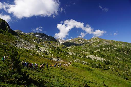 Sot shënohet Dita e Mjedisit, pastrohet zona turistike në Prevallë