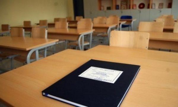 Vendos Qeveria, 1 muaj pushim dimëror në shkolla